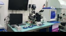 1553595381_03.vantelesna oplodnja time laps vitrolife galerija