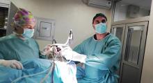 1554971959_26.ortopedija artroskopija kolena galerija